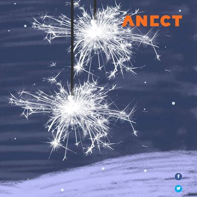 Digitální novoročenka ANECT 2016